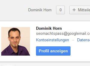 Menü Google(+) App-Berechtigungen